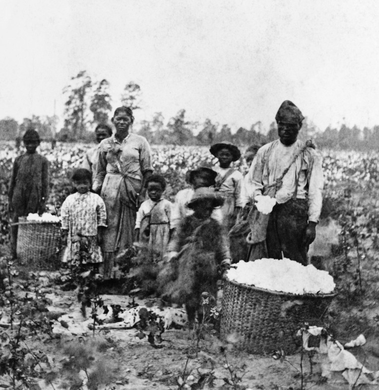 Slave Family In Cotton Field near Savannah